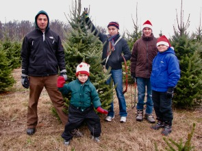 Family Christmas tree expedition